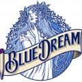 bluedreamer